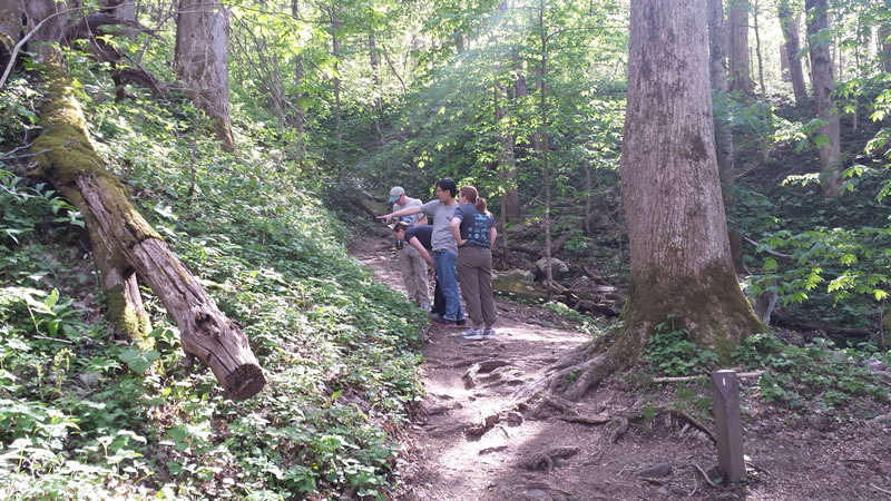 """Eric points out wild flowers to our hiking group."""""""