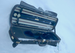 stradivarius_case